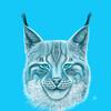 FroXXen's avatar