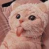 FrozenPineapple1's avatar