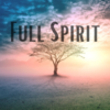 FullSpirit999's avatar
