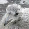 Funduro's avatar