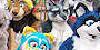 Furry-Timeline's avatar