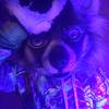 furryf0rm3r's avatar
