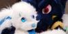 FurryfandomOwO's avatar