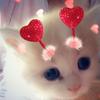 FurryWuv's avatar