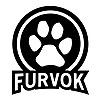 Furvok's avatar