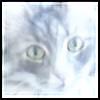 Fyorda's avatar