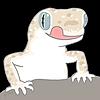 g-Taro's avatar