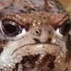 GabyIsTrash's avatar