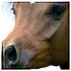 Gala126's avatar