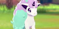 Galarian-Ponyta's avatar