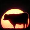 GallopingCow's avatar