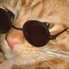 Galqxy's avatar