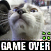 GameOver4ch's avatar