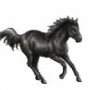Gamezon's avatar