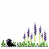 garden-corvidae's avatar