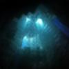gary0221's avatar
