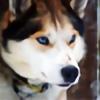gary4wzx's avatar