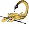 garzahinojosa's avatar