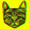 gato74's avatar