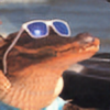 gatorstock's avatar