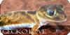GeckoLove's avatar