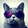 GeeKB0Y's avatar