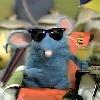 Gemmabee's avatar