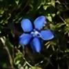 GentianaVerna's avatar