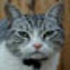 geoluteran's avatar
