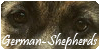 German-Shepherds's avatar