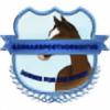 GermanSporthorseStud's avatar
