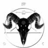 GHOST-DATA's avatar