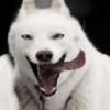 ghostfr's avatar