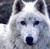 GhostJolt's avatar