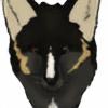 giddyfox's avatar