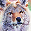 GildedAshes's avatar