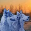 Gingadensetsufan12's avatar