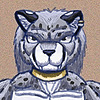 ginkaze's avatar