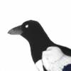 Globin347's avatar