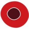 globulr's avatar