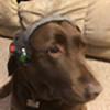Gmeister11's avatar