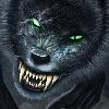 GMORK81's avatar