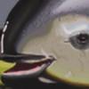 goldenliontamarin's avatar