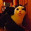 GorkeChaos's avatar