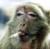 grack2bxact's avatar