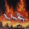 GraniteisaRock's avatar