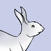 GrayHareWorkshop's avatar