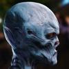 graynd's avatar