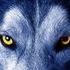 GraysonWolfART's avatar