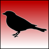 GreenSkyBlackBird's avatar
